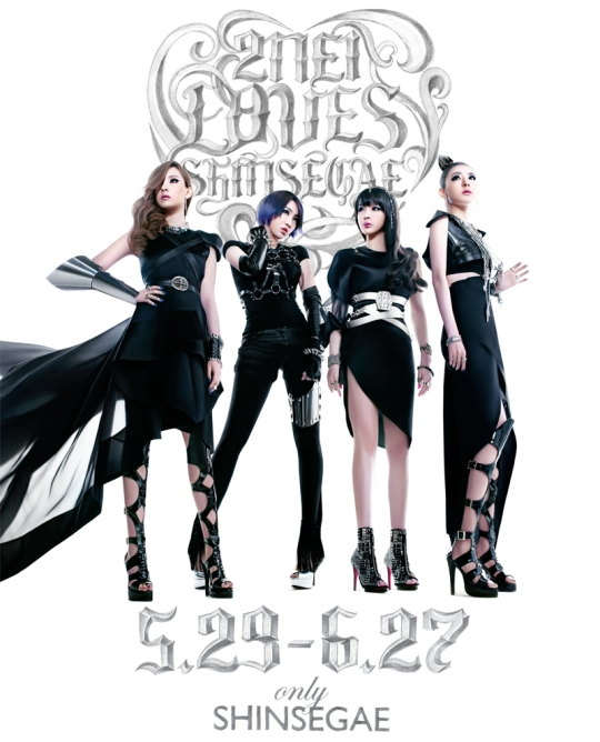 2ne1lovesshinsegae_800px_final