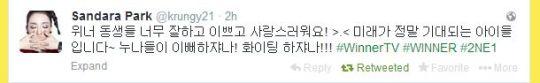 FireShot Screen Capture #032 - 'Sandara Park (krungy21) on Twitter' - twitter_com_krungy21_with_replies