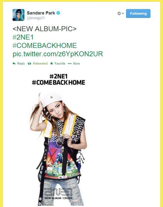 FireShot Screen Capture #240 - 'Twitter _ krungy21_ {NEW ALBUM-PIC} #2NE1 #C ___' - twitter_com_krungy21_status_446220259658174464