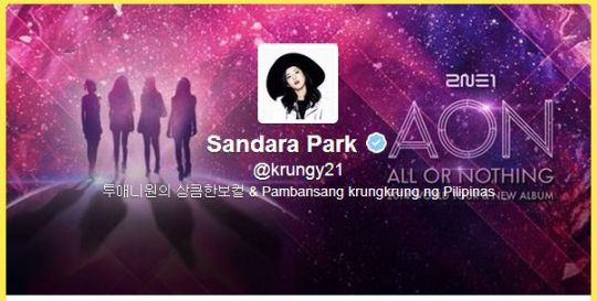 FireShot Screen Capture #333 - 'Sandara Park (krungy21) on Twitter' - twitter_com_krungy21_with_replies